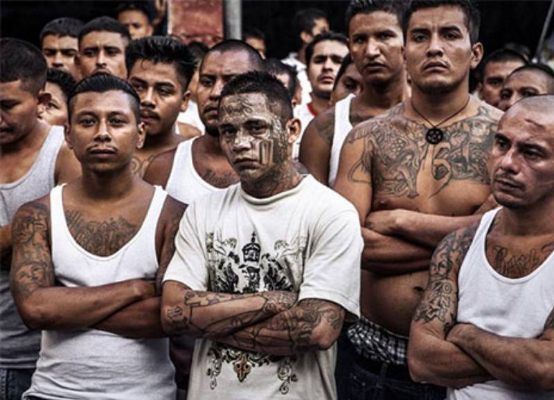 Самые крупные: банда мексиканцев