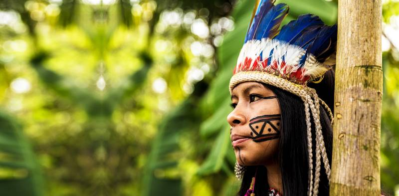 племя одно из крупнейших по численности