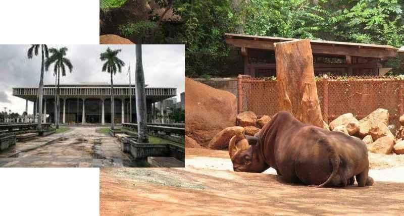 Официальное открытие зоопарка состоялось в 1877